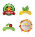Green eco and bio emblems set vector