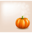 Orange pumpkin with bokeh vector