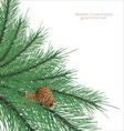 Branch fir with cones vector