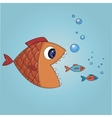 Fish trying to eat two small fishes vector
