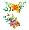 Watercolor flower compositions vector