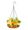 A hanging plant with a caterpillar vector