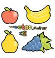 Fruit set apple pear grapes bananas on white backg vector