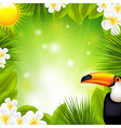 Green background with tropical elements vector