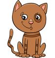 Cat kitten cartoon vector