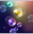 Shiny soap bubbles vector