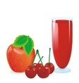 Juice red vector