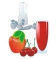 Juice red blend vector