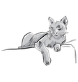 Colored hand drawn cat grey cat vector