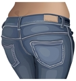 Jeans female jeans girl female fashion young denim vector