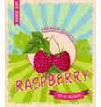 Raspberry retro poster vector