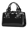Designer female bags vector