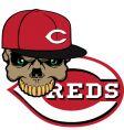 Reds baseball vector