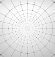 Wireframe polygonal element abstract background vector