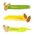 Set of nuts banners vector