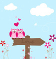 Two pink owl in love vector