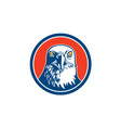 American bald eagle head circle retro vector