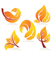 Collection of bright autumn leaves vector