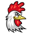 Rooster mascot vector