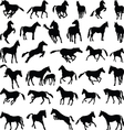 Horses various postures silhouettes vector