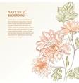 Branch of chrysanthemum vector