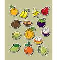 Cartoon fruit vector