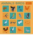Birds icon set flat style vector
