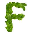 Letter f of green leaves alphabet vector