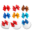 Big collection of colorful gift bows and labels vector