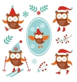 Cute winter owls vector