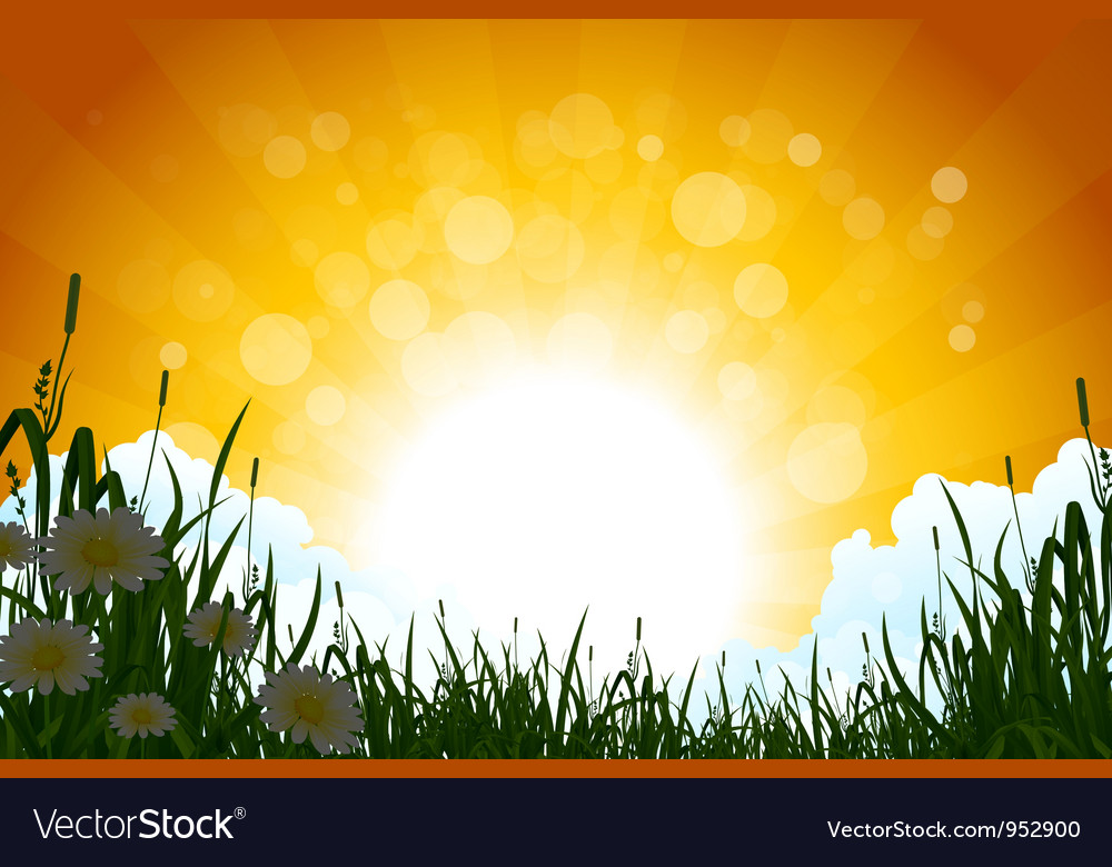 Amazing sunrise landscape vector | Price: 3 Credit (USD $3)