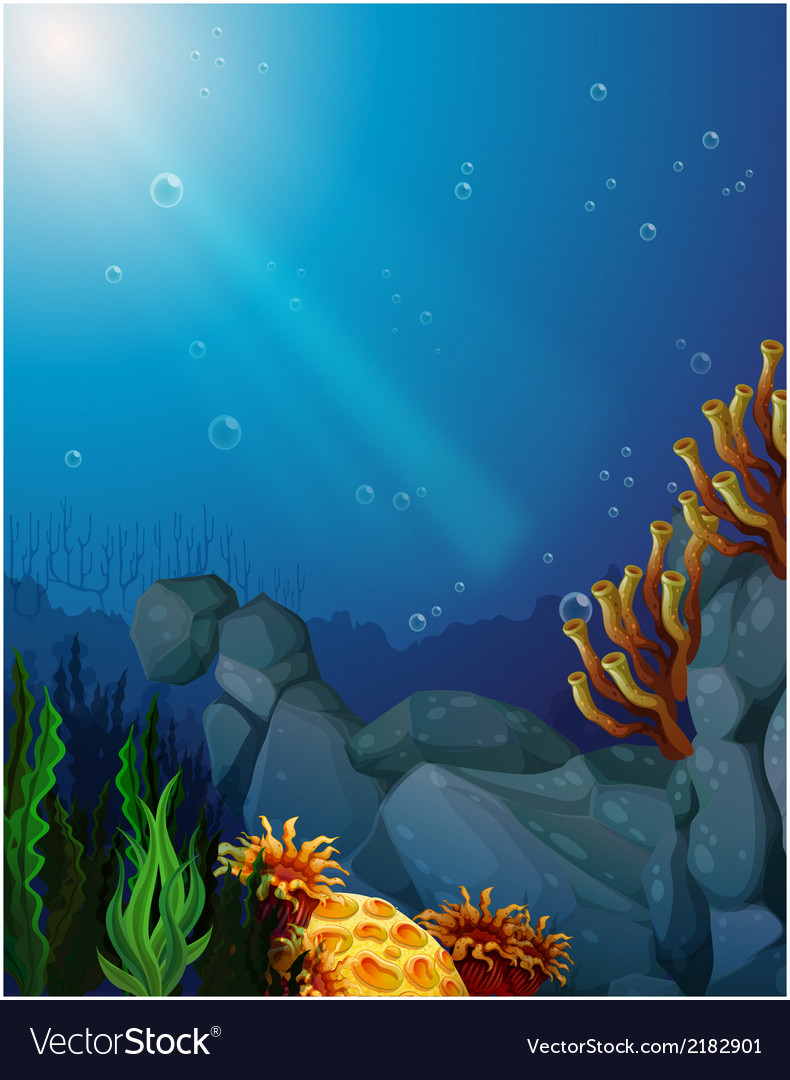 Corals and seaweeds under the sea vector | Price: 3 Credit (USD $3)