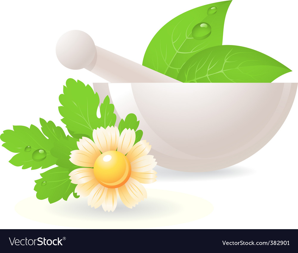 Mortar with herbs and chamomile vector | Price: 1 Credit (USD $1)