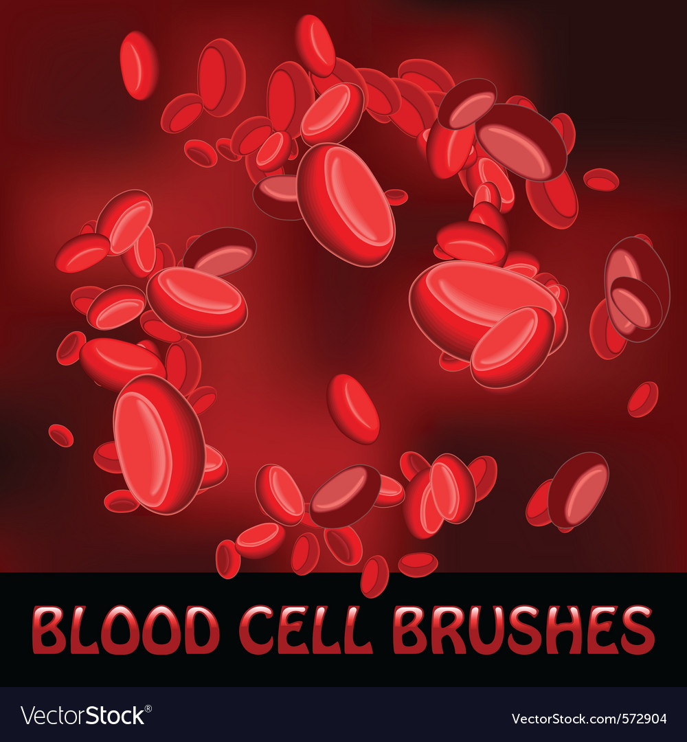 Blood cell brushes vector | Price: 1 Credit (USD $1)