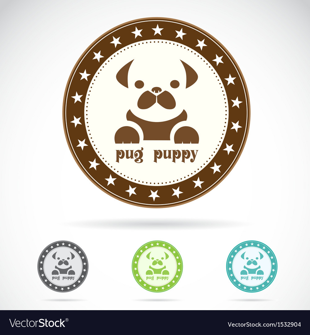 Pug puppy vector | Price: 1 Credit (USD $1)