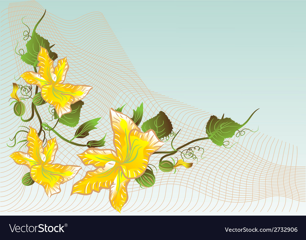 Abstract flower of pumpkin vector | Price: 1 Credit (USD $1)