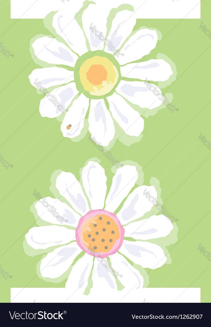 Daisies vector