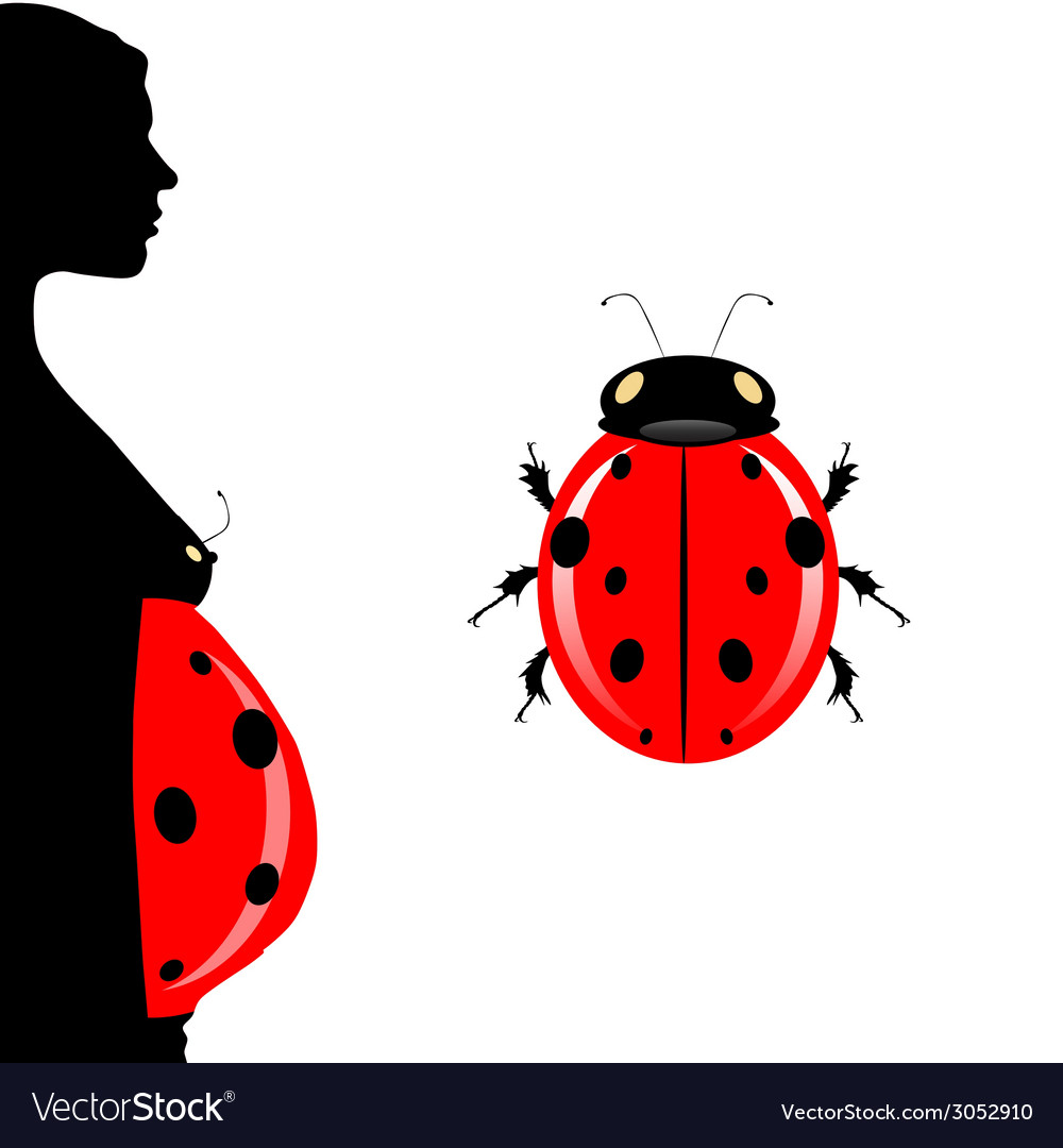 Pregnant woman with belly and ladybug vector | Price: 1 Credit (USD $1)