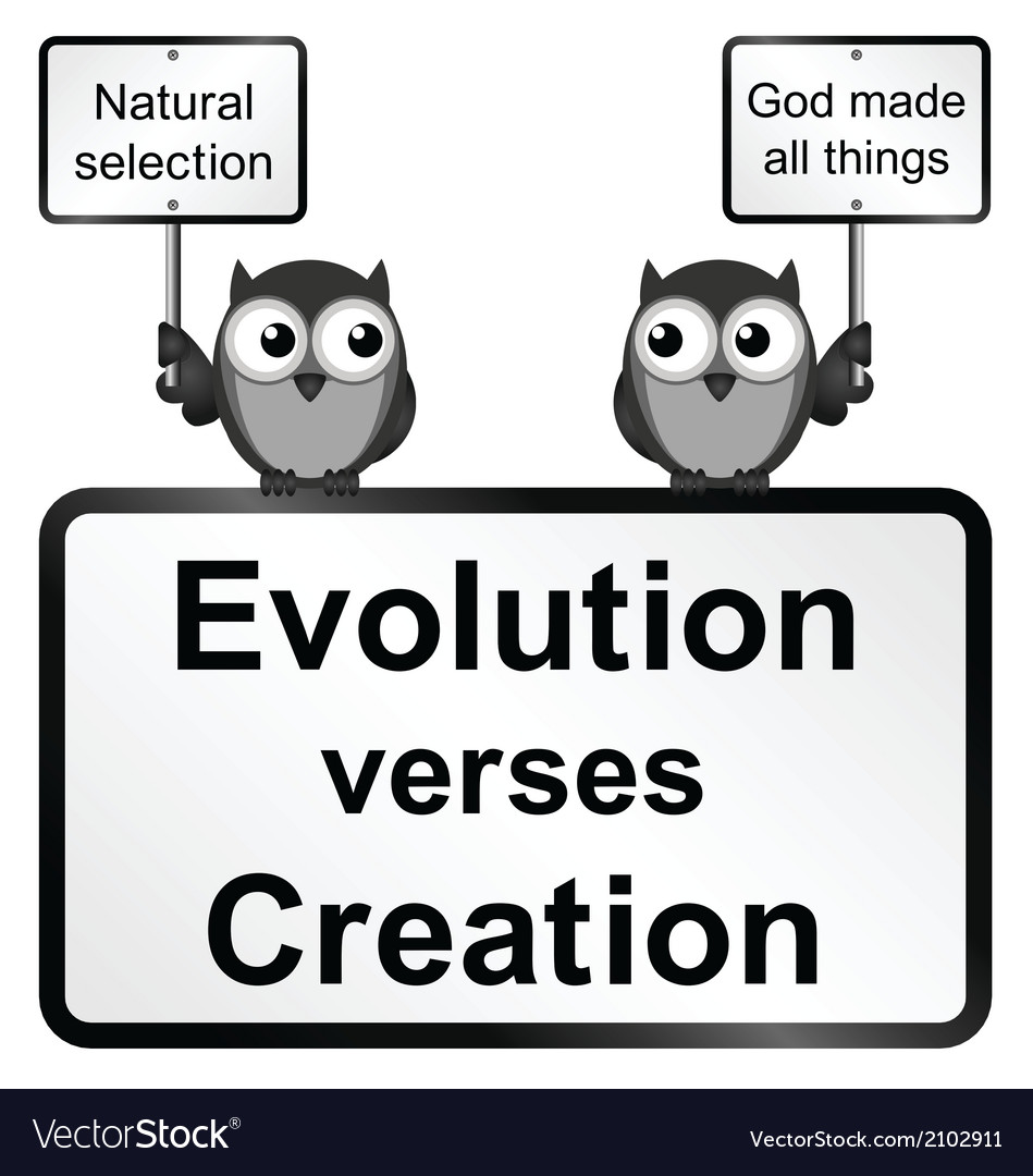 Evolution verses creation vector | Price: 1 Credit (USD $1)