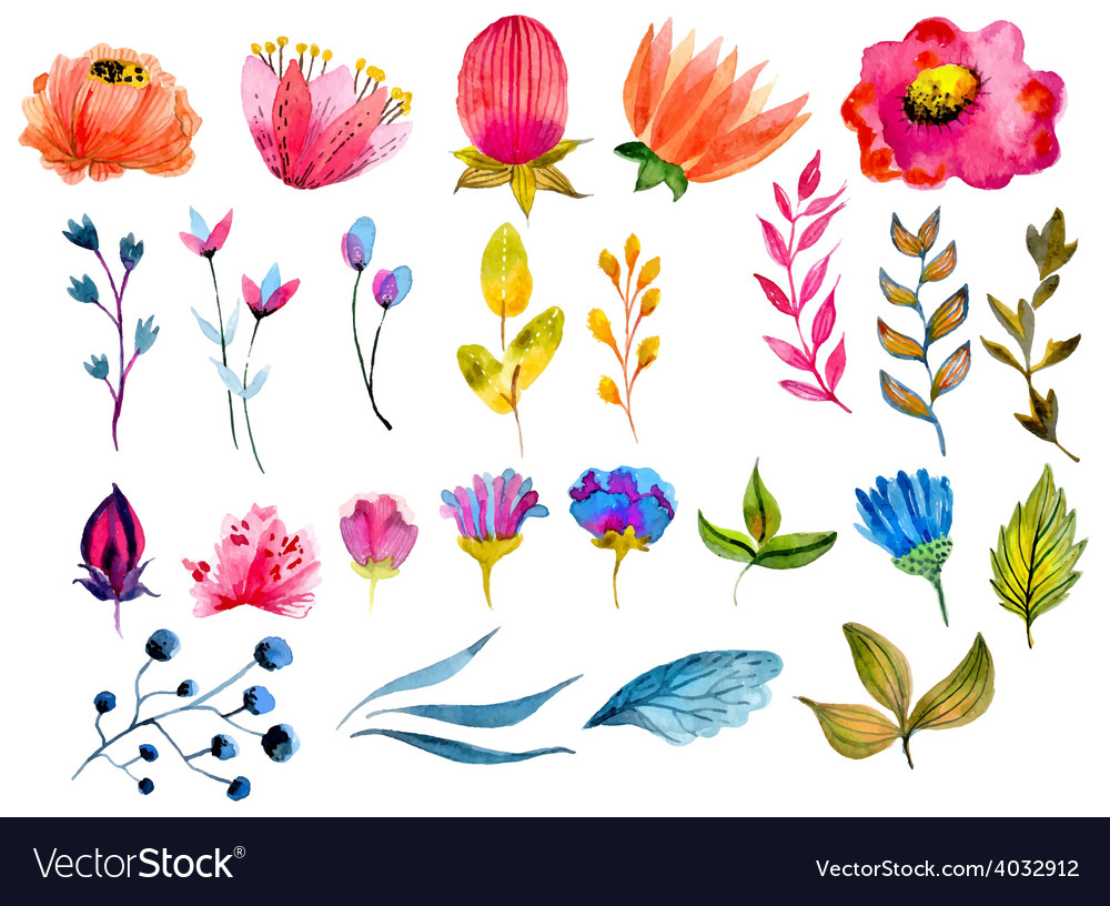Beautiful watercolor flower set vector | Price: 1 Credit (USD $1)