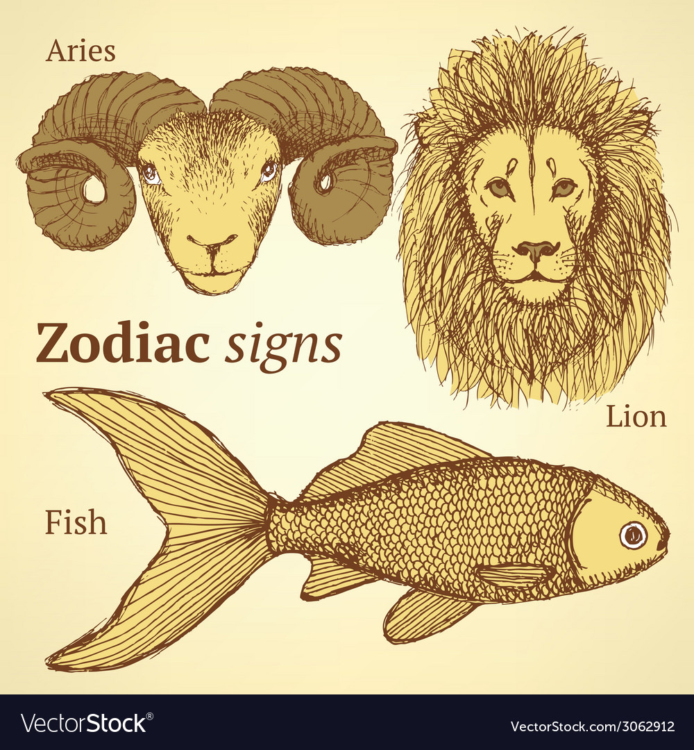 Sketch zodiac ram fish and lion vector | Price: 1 Credit (USD $1)