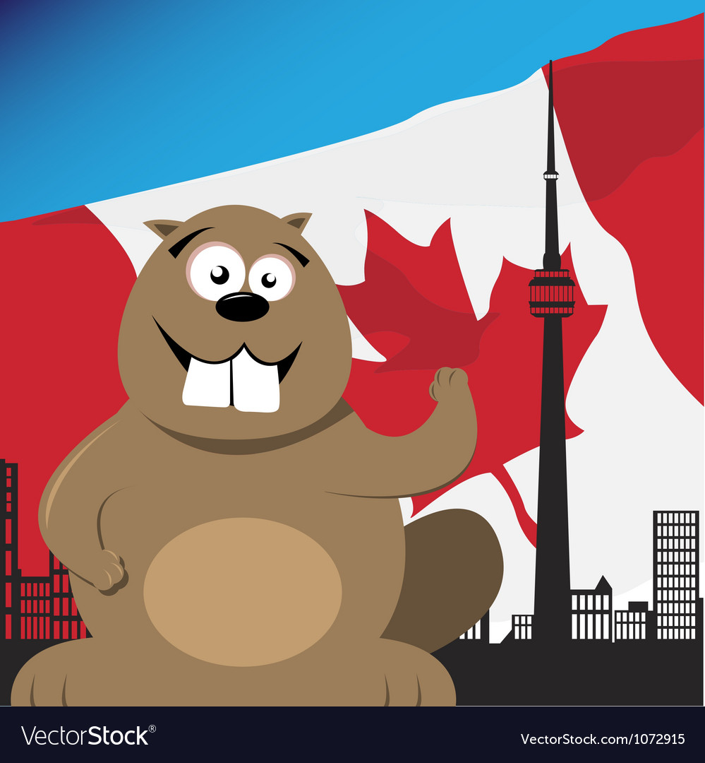 Canadian beaver vector | Price: 1 Credit (USD $1)