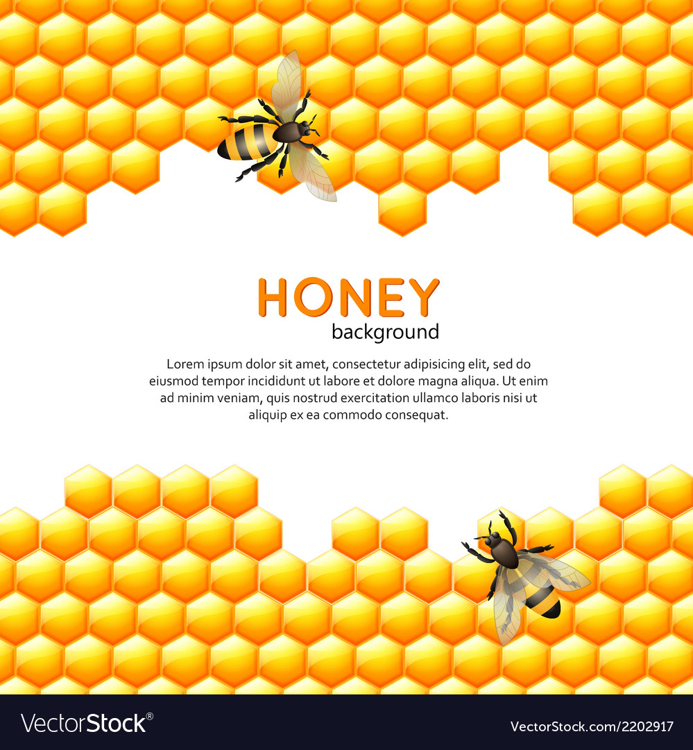 Honey bee background vector | Price: 1 Credit (USD $1)