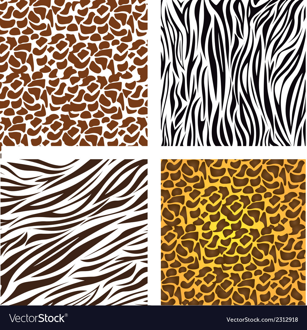 Pattern of animal print vector | Price: 1 Credit (USD $1)