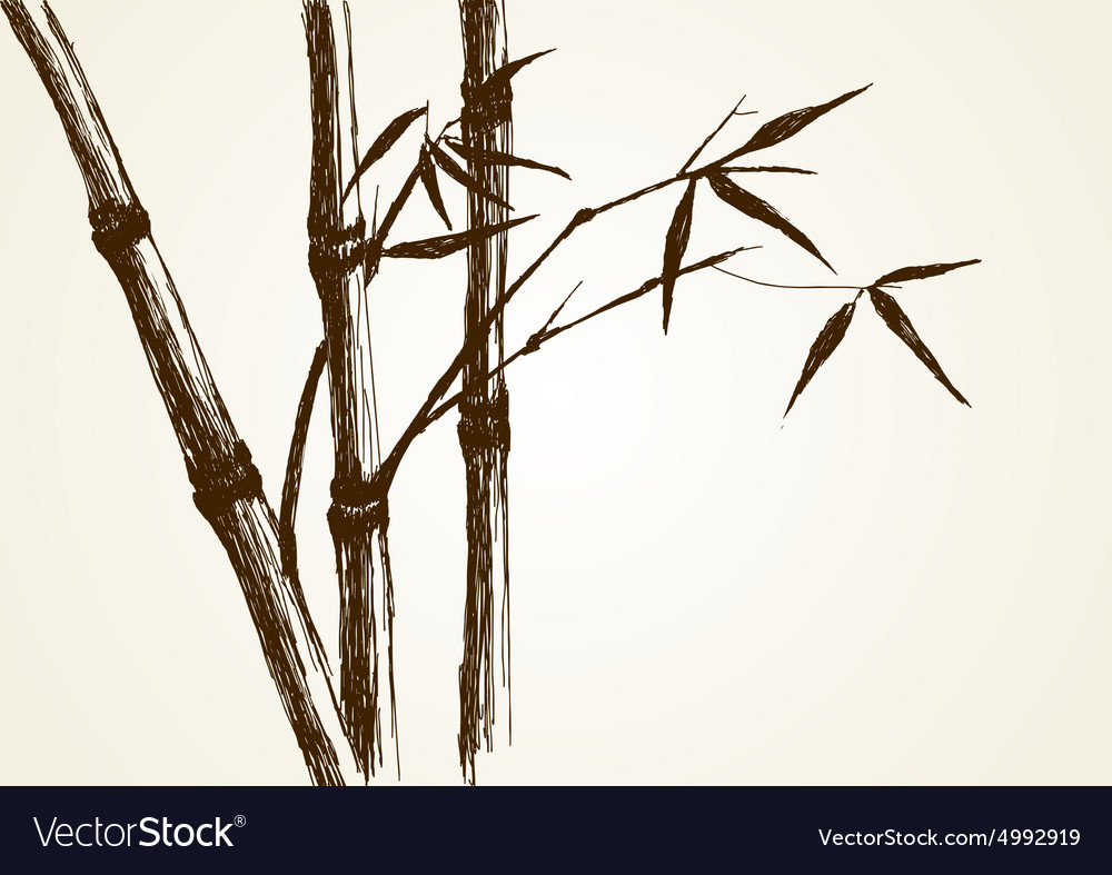 Bamboo tree vector