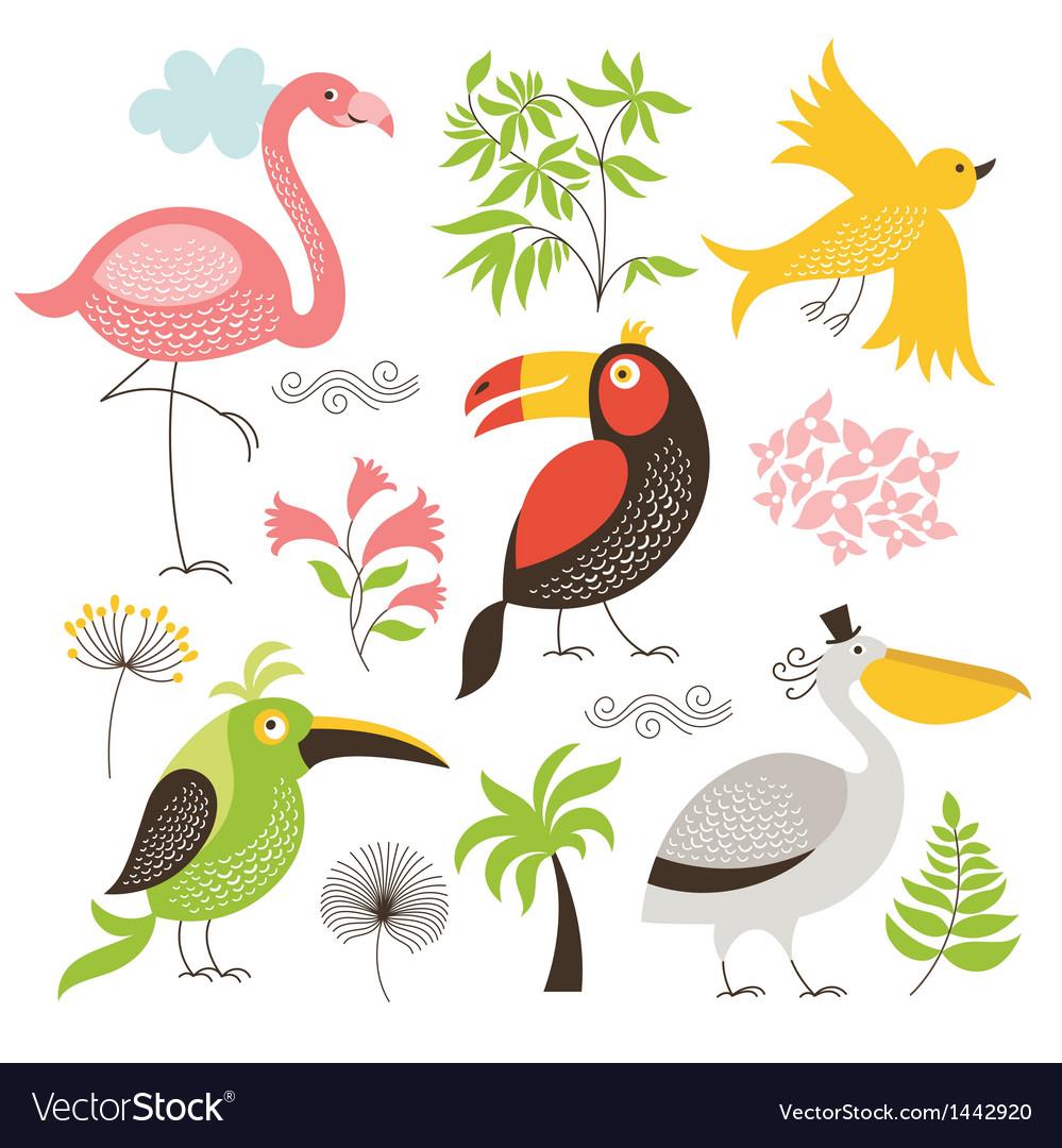 Set of an exotic birds vector