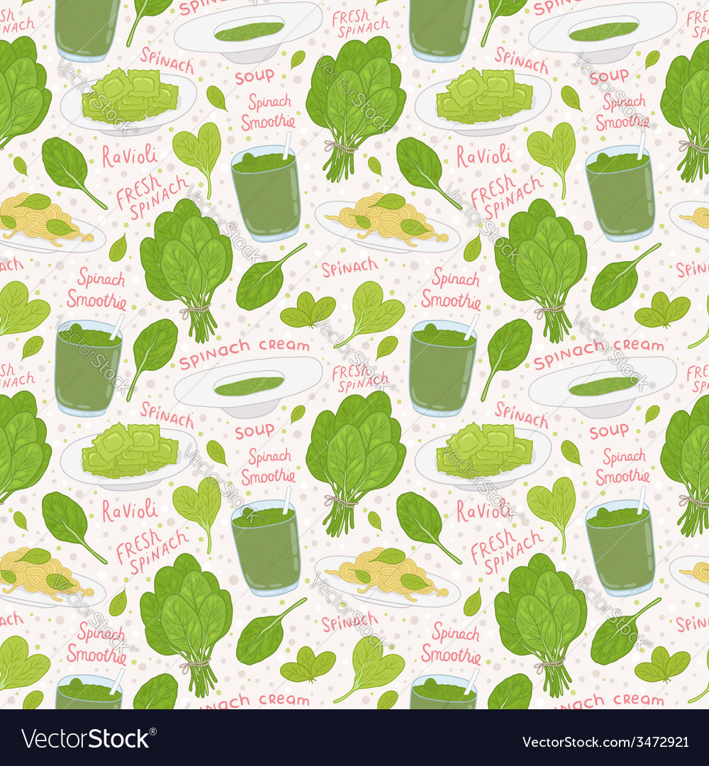 Hand drawn spinach seamless pattern vector | Price: 1 Credit (USD $1)