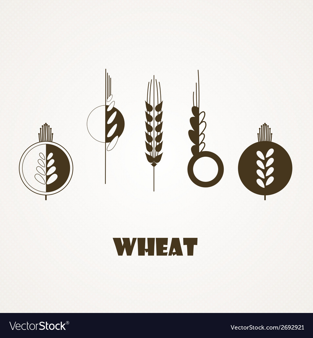 Wheat ear icon set vector | Price: 1 Credit (USD $1)
