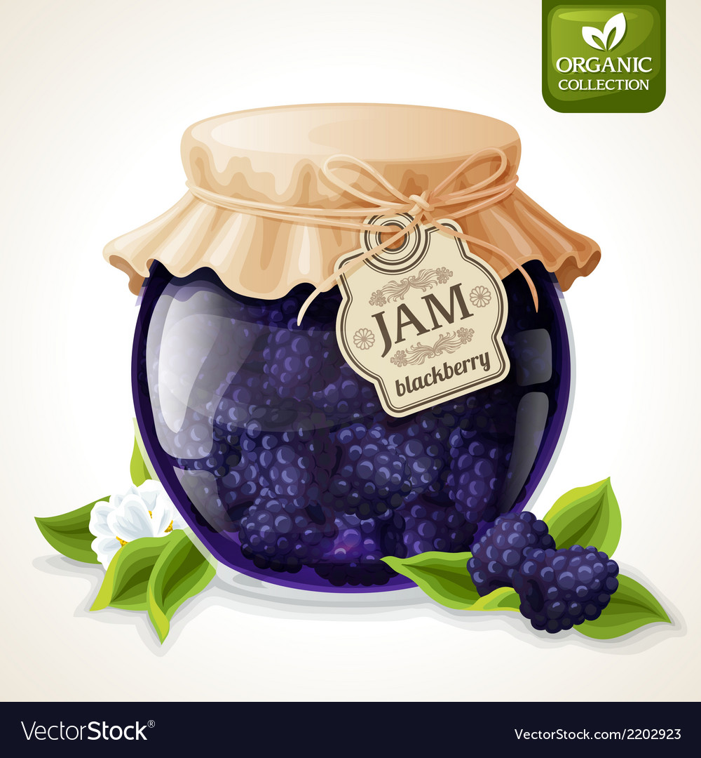 Blackberry jam glass vector | Price: 1 Credit (USD $1)
