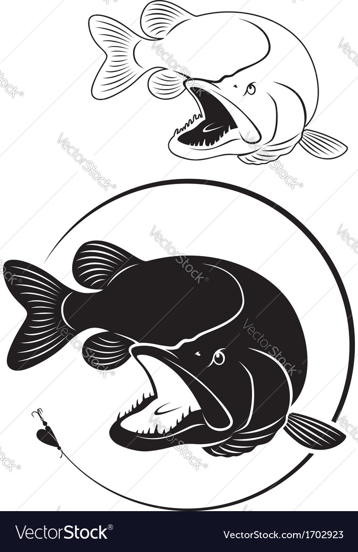 Fish pike vector | Price: 1 Credit (USD $1)